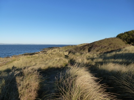 The coast near Gullane, East Lothian