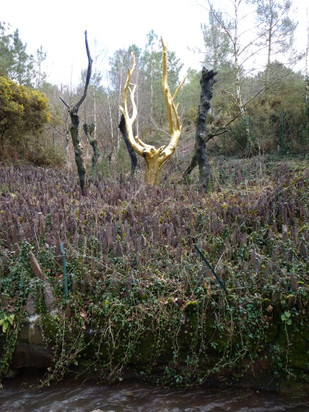 The Gilded Tree, Val Sans Retour