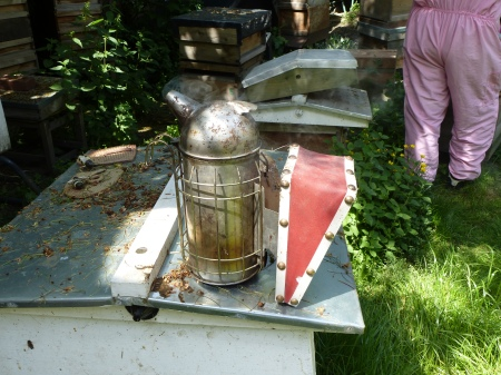 A hive smoker, Bee Urban