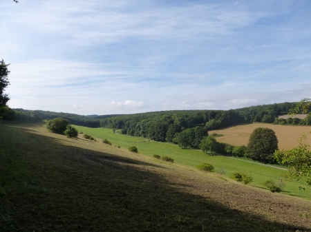 Looking across the valley towards the West Woods, Wiltshire