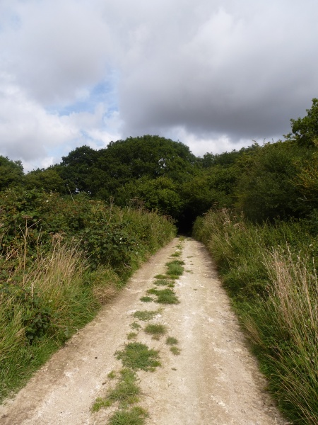 Walking the ancient Ridgeway, Wiltshire