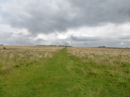Walking up to Fyfield Down, Wiltshire