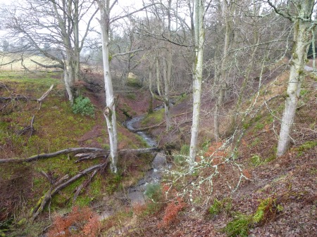 A picturesque gorge in the grounds of Penicuik House