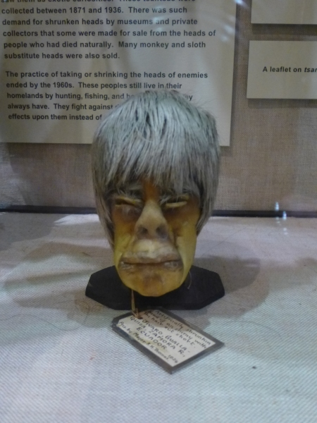 One of the many shrunken heads in the collection of the Pitt Rivers Museum, Oxford