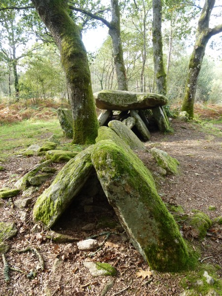 The mossy stones of the Dolmen de la Loge au Loup