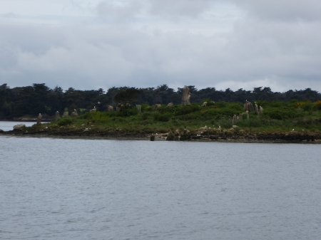 The standing stones of Er Lannic, Morbihan
