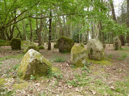 Some of the larger stones in the alignements du Petit-Ménec, Carnac
