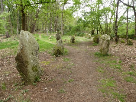 The magical stones of Petit-Ménec, Carnac