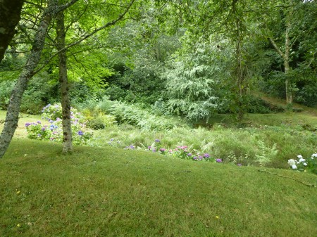 The overgrown ponds in the gardens at Quinipily