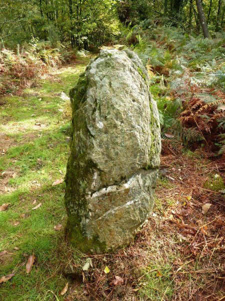 The standing stone at the neolithic site of Beaumont